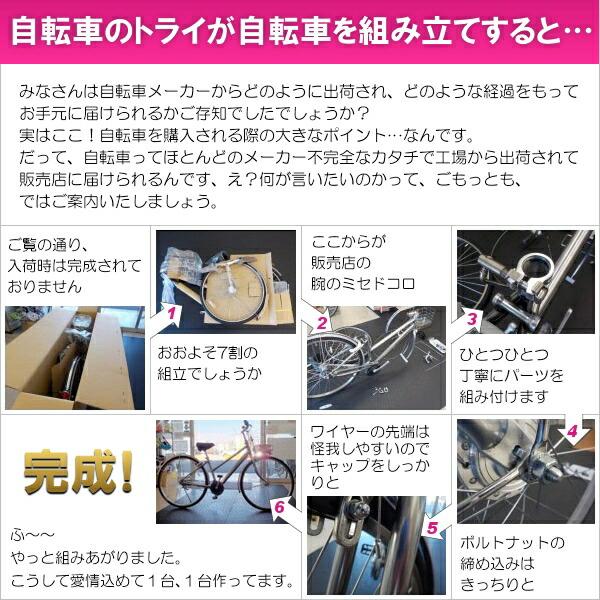 ミヤタクロスバイクEXクロスディスクBECD42A1(OK08)マットブラック【2021年モデル】【完全組立済自転車】